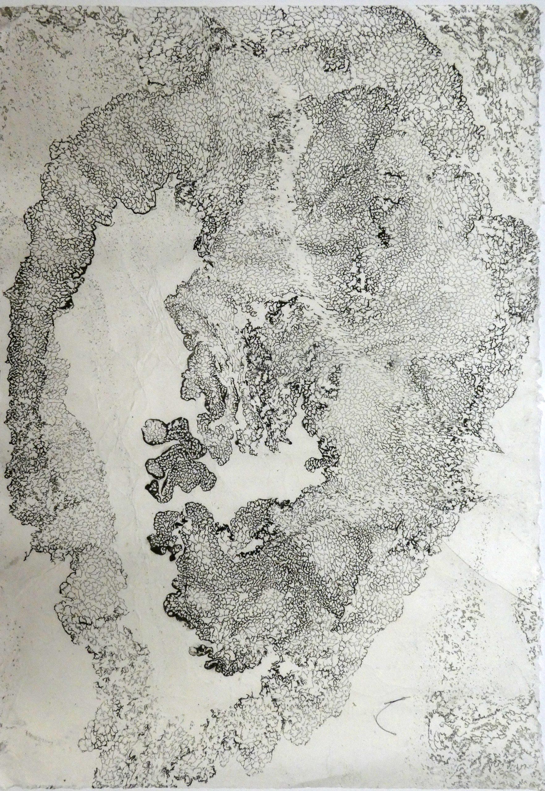 Territoire imaginaires (papier washi)